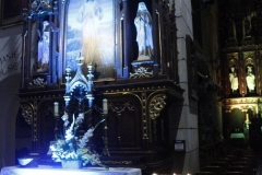 Koncert w kościele - Wjazd króla do Krosna(05)