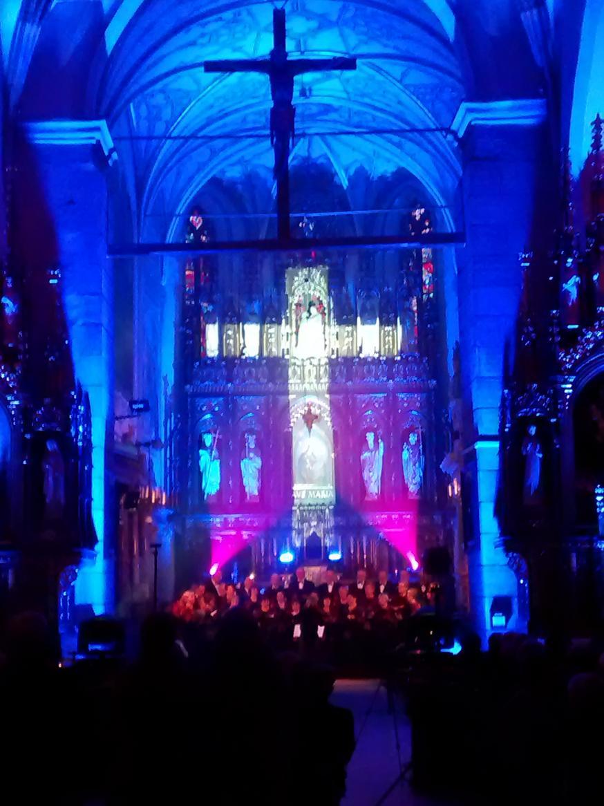 Efekty świetlne w czasie Bilijnej Drogi Krzyżowej z koncertem pieśni pasyjnych (18)