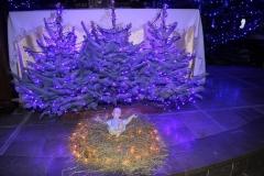 Wystrój Kościoła na Boże Narodzenie 2018 (1)