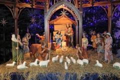 Wystrój Kościoła na Boże Narodzenie 2018 (4)